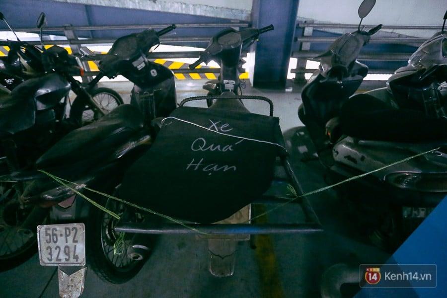 Hàng trăm chiếc xe máy quá hạn vì gửi 2 năm không ai nhận, nhà xe sân bay Tân Sơn Nhất thiệt hại nửa tỉ đồng 11