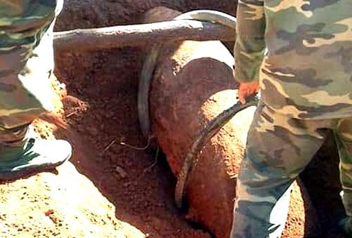Chẻ củi trên quả bom nặng 250 kg suốt nhiều năm và cái kết bất ngờ 1