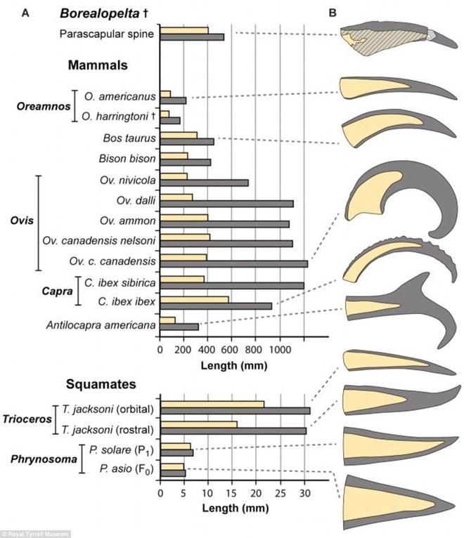 Giải mã hóa thạch quái vật mệnh danh