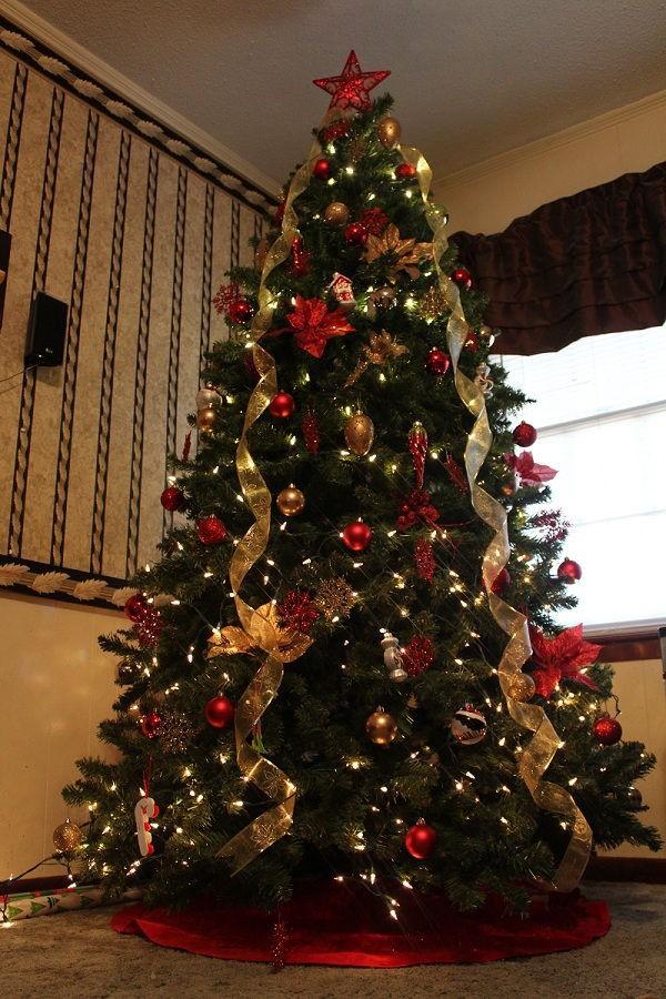 5 bí mật về ngày Giáng sinh: Nguyên mẫu của ông già Noel và câu chuyện đàn tuần lộc bị thiến 6