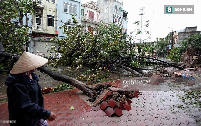 Sự nguy hiểm khôn lường của những cơn bão cuối năm đổ bộ vào Việt Nam 2