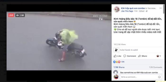 Livestream bão số 16
