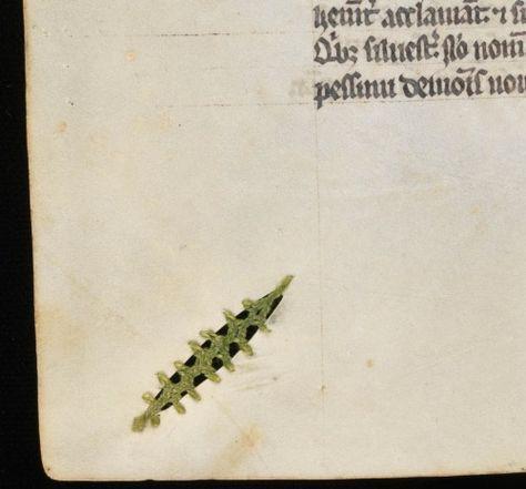 Nghệ thuật vá sách thời Trung Cổ: Sự sáng tạo tuyệt vời ai nhìn cũng phải trầm trồ 2