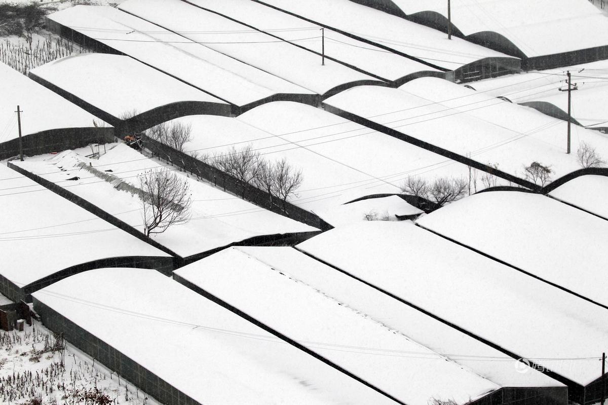 Cảnh tượng lạnh đầy khắc nghiệt tại Trung Quốc: Chị em phụ nữ quấn chăn, bịt kín lái xe máy đi làm 15