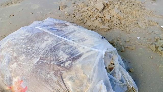 Chưa tìm được nguồn gốc 5 tạ thịt thối dạt vào bờ biển Thừa Thiên-Huế 1