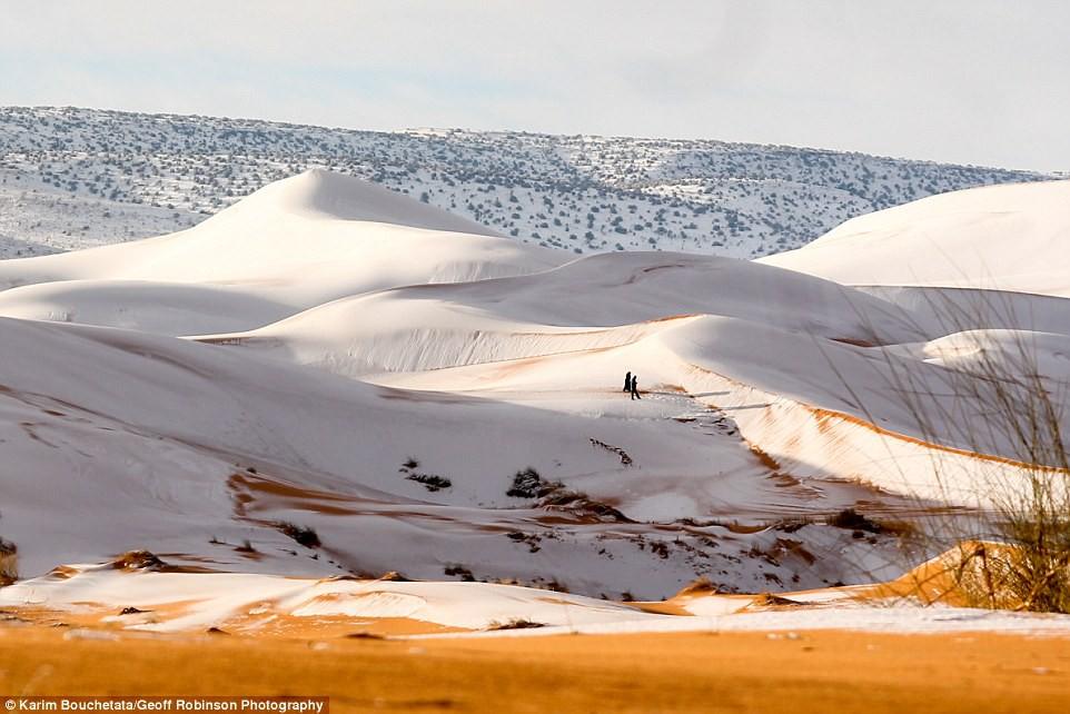 Thế giới lạnh siêu mạnh đến mức sa mạc Sahara nóng bỏng cũng bị tuyết phủ tới 40 cm 3