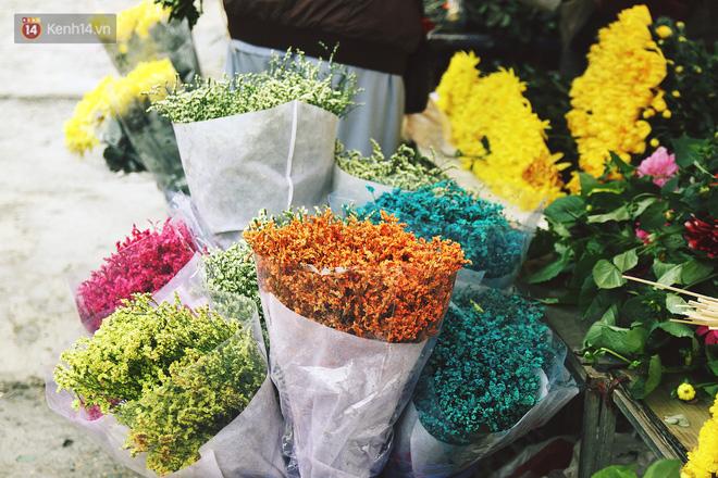 Hình ảnh Người dân làng đào Nhật Tân: Từ giờ đến Tết mà rét thế này thì đào không nở hoa kịp mất! số 13