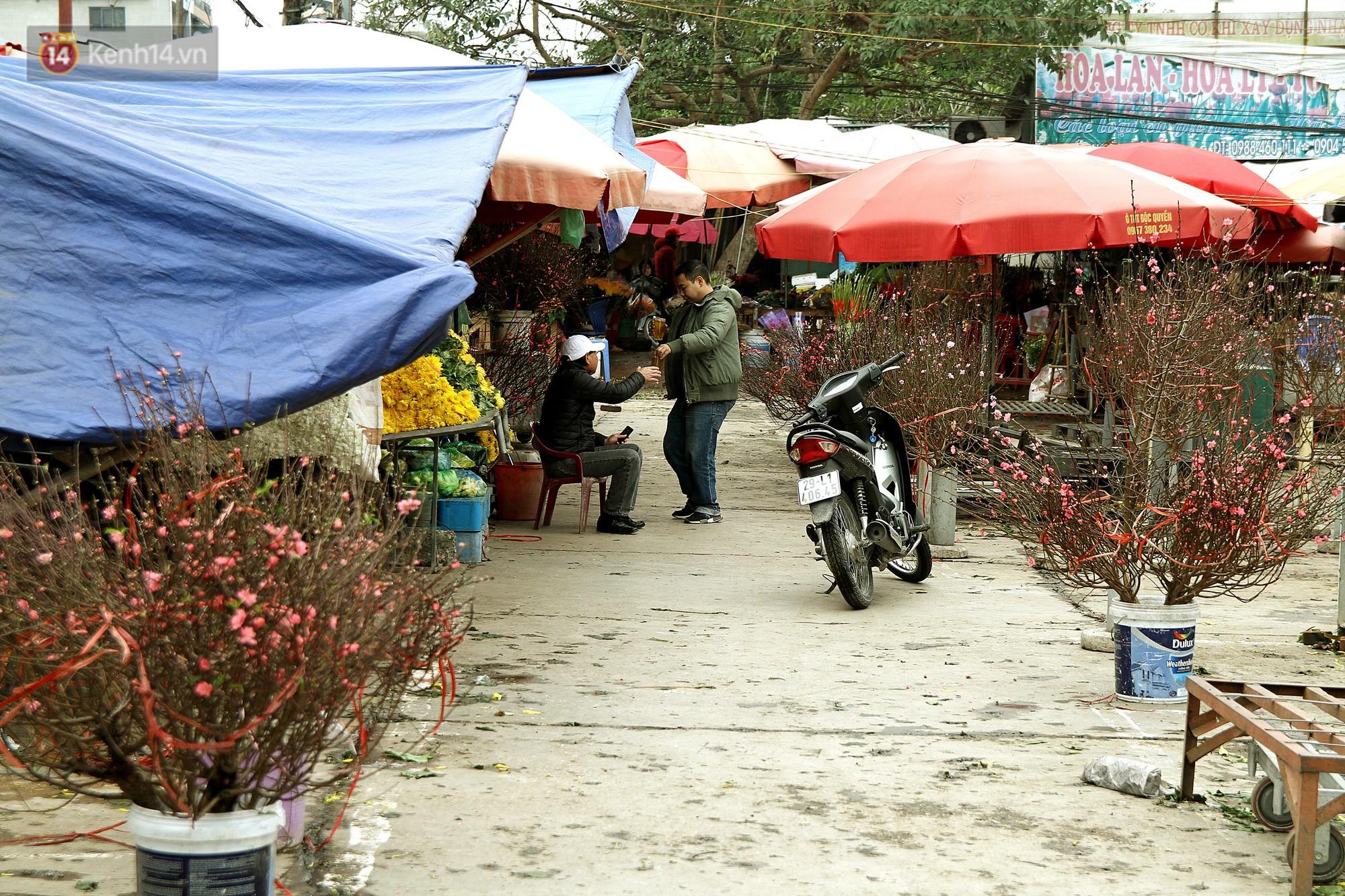 Người dân làng đào Nhật Tân: