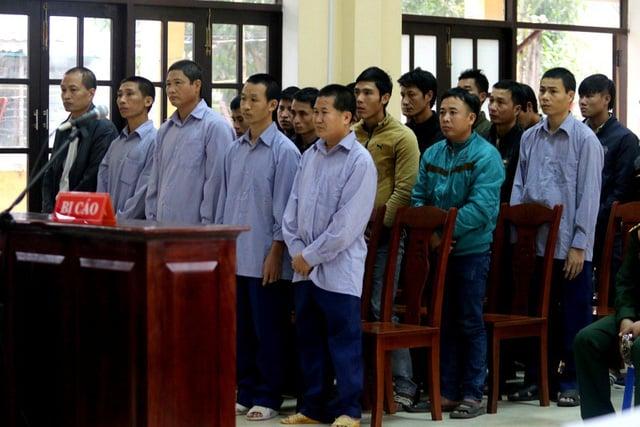 Hình ảnh Xét xử 21 bị cáo liên quan đến vụ phá rừng pơ mu khủng ở Quảng Nam số 1