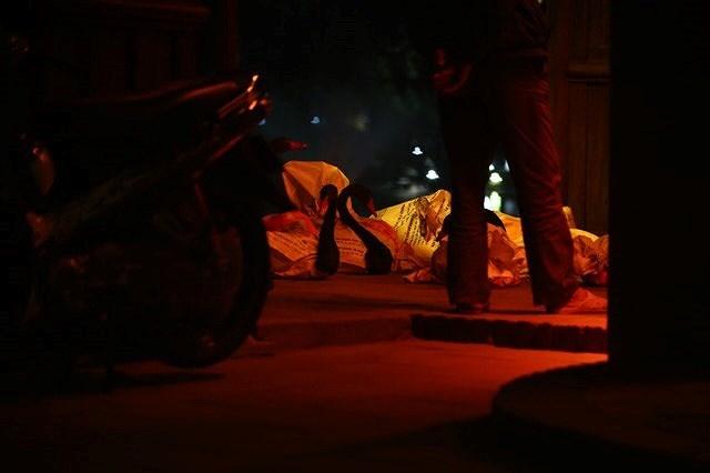 12 con Thiên nga ở hồ Gươm đã bị bắt lại giữa đêm 3