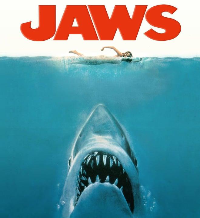 Tại sao cá mập luôn là nỗi khiếp sợ, dù chúng ta giết tới hàng triệu con mỗi năm? 2