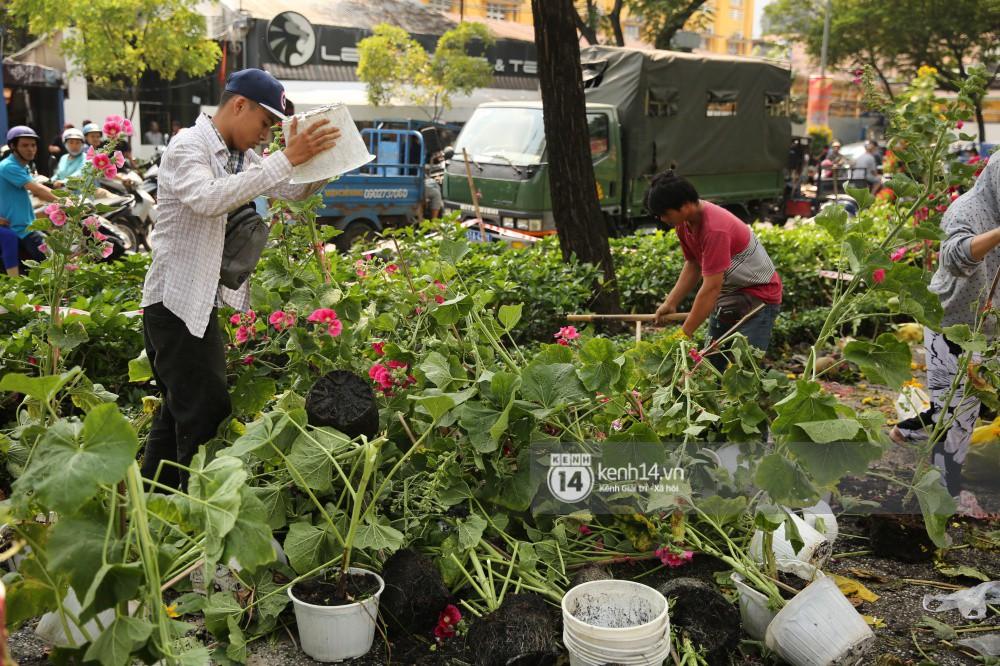 Clip: Không bán hết hàng trưa 30 Tết, nhiều tiểu thương tự tay đập nát chậu hoa, vứt vào thùng rác 5