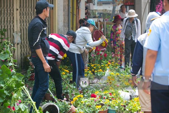 """Câu chuyện đáng yêu về hai vợ chồng """"dịu dàng giữa thịnh nộ"""": Mang hoa ế 30 Tết trang trí cho vòng xoay ở Sài Gòn 1"""