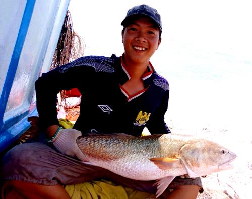 Bắt được cá 6 kg nghi cá sủ vàng quý hiếm ở miền Tây 1