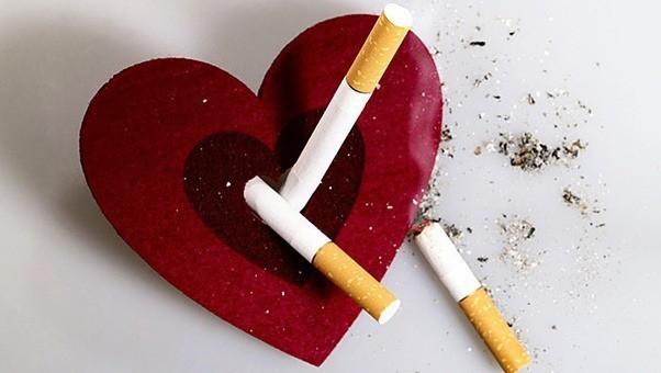 Điều gì sẽ xảy ra với cơ thể, ngay từ điếu thuốc đầu tiên bạn thử trong đời? 2