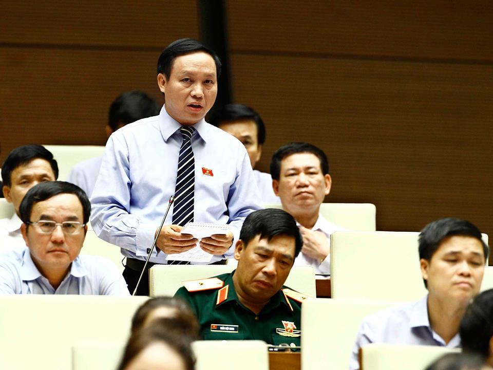 Một đại biểu Quốc hội thôi nhiệm vụ để đi làm đại sứ 1