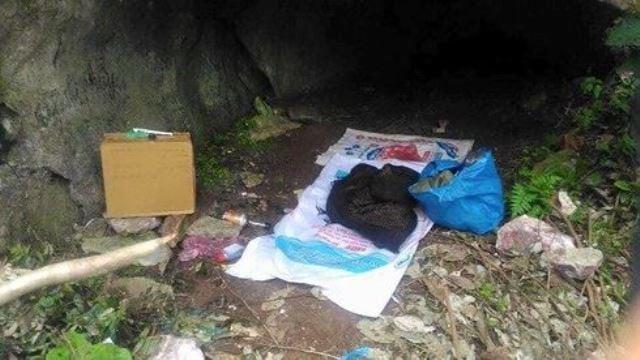 Hình ảnh Thông tin mới nhất vụ 2 bố con vào rừng lấy mật bị hàng xóm sát hại dã man số 2