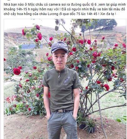 Bị chửi vì cắp cây hoa hồng cổ 10 năm, chàng trai lên tiếng 1