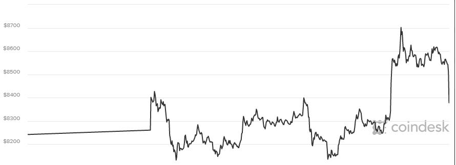 Hình ảnh Giá bitcoin hôm nay 20/3: Bitcoin cùng hàng loạt đồng tiền kỹ thuật số lớn tăng số 1