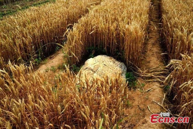 Sự thật đằng sau ngọn núi nhỏ nhất Trung Quốc chỉ cần một bước chân đã có thể trèo qua 3