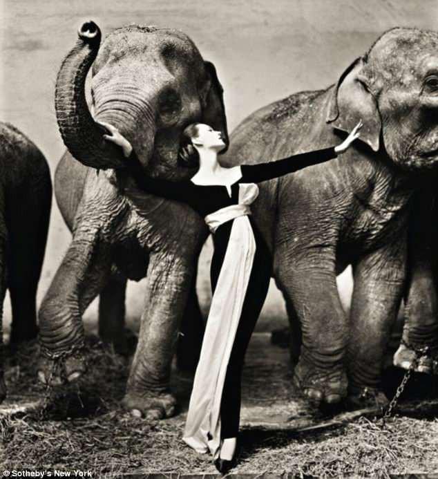 Những bức ảnh thời trang kinh điển và đắt giá của thế kỷ 20, có bức được định giá tới 6,8 tỷ đồng - Ảnh 2.