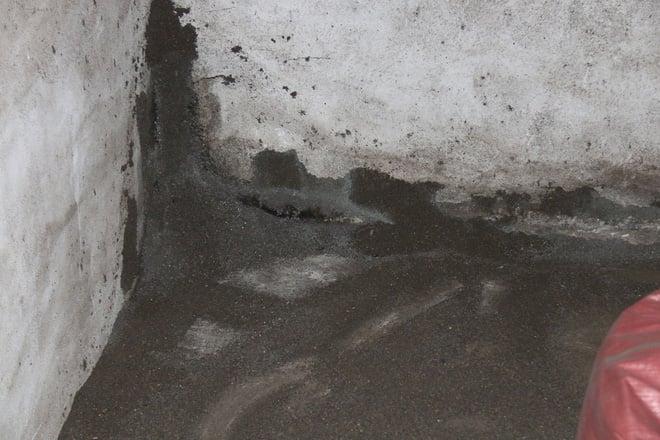 Cận cảnh bên trong cơ sở chế biến cà phê từ bột đá và pin Con Ó - Ảnh 5.