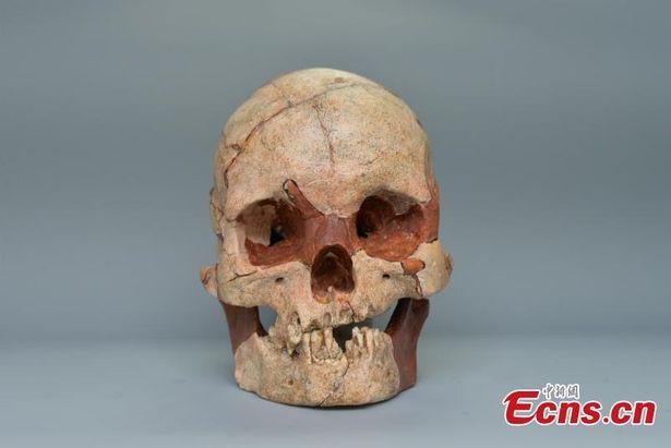 Phát hiện hộp sọ người hoàn chỉnh 16.000 năm tuổi, nhiều bí mật được tiết lộ 1