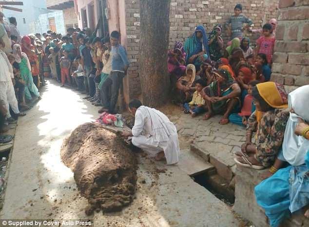 Phủ phân bò khắp người để chữa rắn cắn, người phụ nữ thiệt mạng lúc nào không hay 2