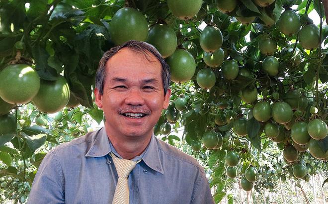Hình ảnh Bầu Đức thu được mỗi tháng hơn 30 tỷ đồng từ trồng ớt số 2