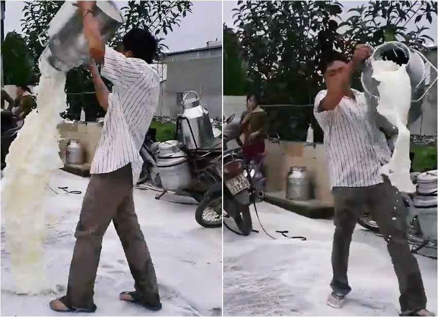 Chính quyền và nhà máy sữa Nghệ An nói gì vụ người nông dân tức giận đổ sữa trắng xóa mặt đường? 1