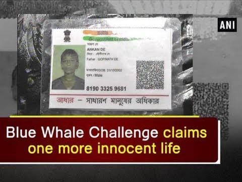 Những người đã thiệt mạng bởi trò chơi nguy hiểm 'cá voi xanh' trên khắp thế giới 7