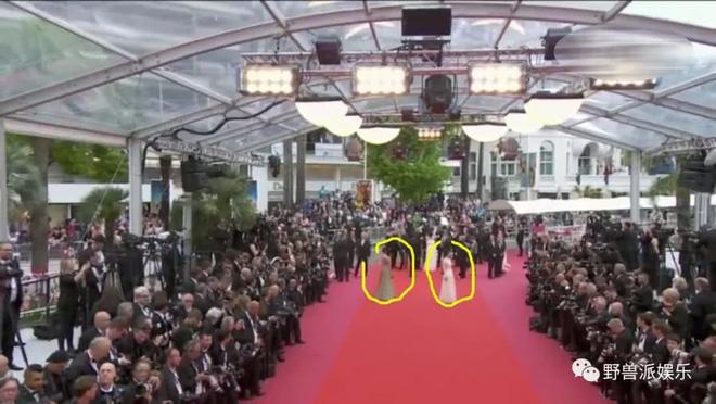 Thảm đỏ Cannes 2018: Mỹ nhân Nhật gây hoang mang với màn tạo dáng 'có 1 không 2' 10