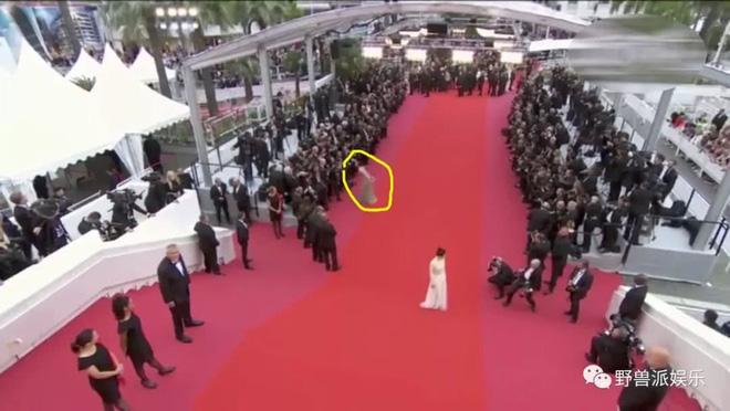 Thảm đỏ Cannes 2018: Mỹ nhân Nhật gây hoang mang với màn tạo dáng 'có 1 không 2' 24
