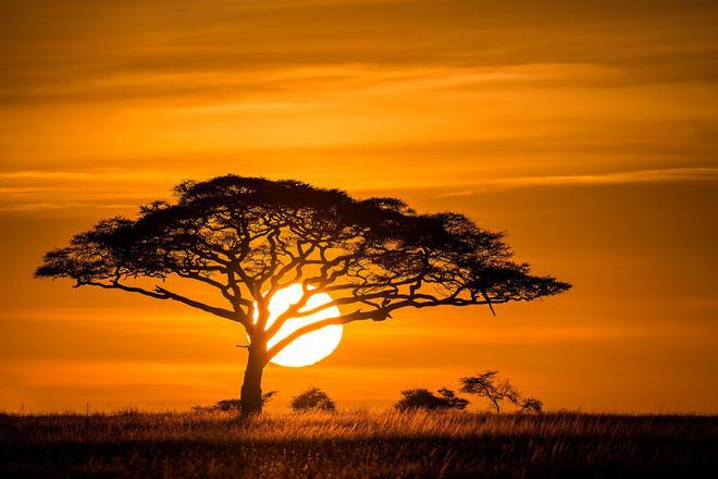 Ai cũng thấy Mặt trời trông to hơn hẳn mỗi khi hoàng hôn, bình minh - nhưng vì sao thì đố bạn biết! 1