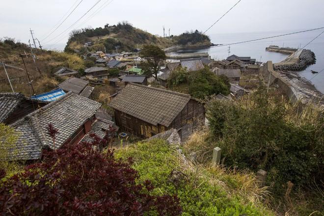 Ở Nhật, có 1 hòn đảo chỉ rộng 1,4km nhưng lại được mệnh danh là
