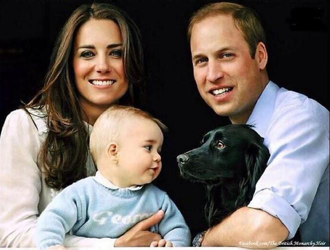 Không thể ngờ đây là món quà cho đám cưới hoàng gia: từ nhẹ nhàng áng thơ đến 'nặng trịch'... 1 tấn than bùn! 3