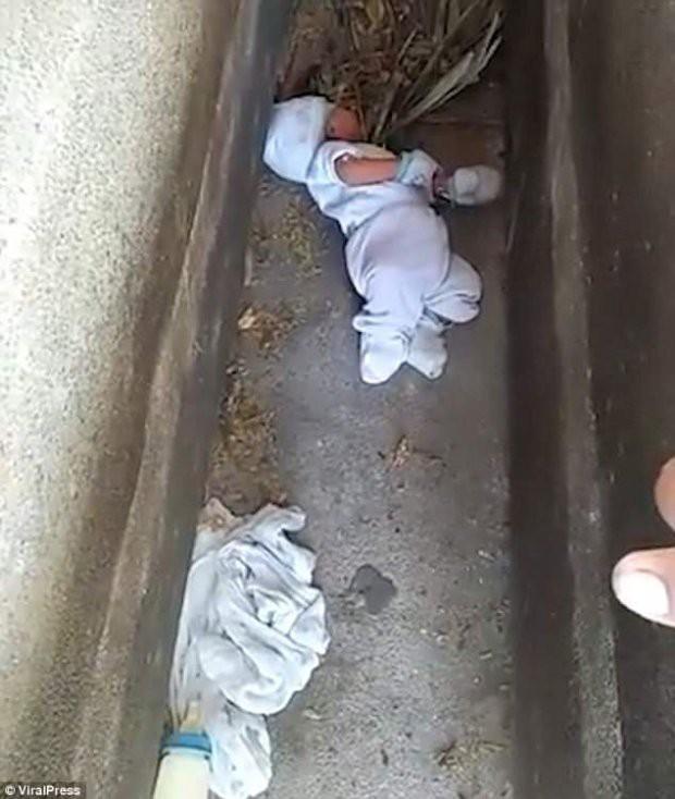 Bé trai 2 tháng tuổi bị bỏ rơi giữa nghĩa địa gây xôn xao 1