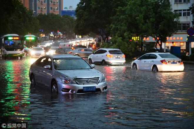 Trung Quốc: Bão lớn khiến hải sản tươi sống trút xuống như mưa trên đường phố 1