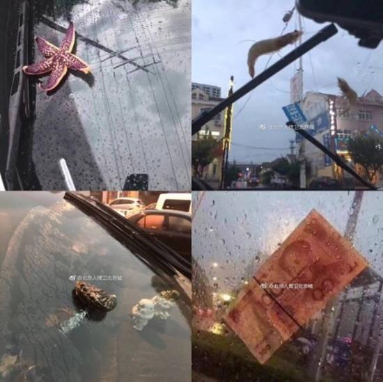 Trung Quốc: Bão lớn khiến hải sản tươi sống trút xuống như mưa trên đường phố 2