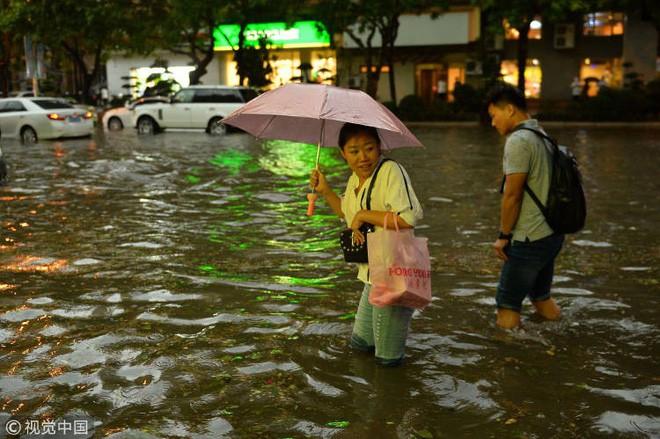 Trung Quốc: Bão lớn khiến hải sản tươi sống trút xuống như mưa trên đường phố 3