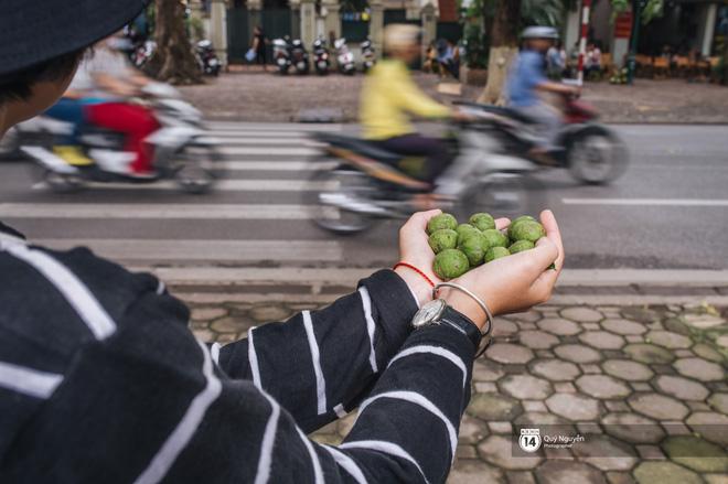 Mùa sấu về trên phố phường Hà Nội: Nhóm thợ đánh giày tranh thủ