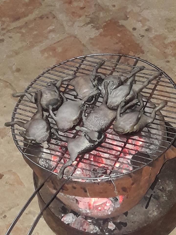 Góc đặc sản: Món ếch nướng cả con không bỏ gì hết khiến dân mạng băn khoăn có nên làm thử hay không - Ảnh 3.