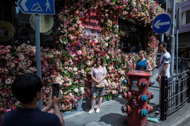 24h qua ảnh: Người phụ nữ thu hoạch hoa sen ở Việt Nam 10