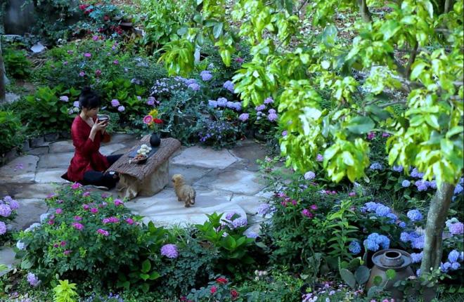 Cuộc sống đẹp như trong mơ với khu vườn không khác gì cổ tích của cô gái trẻ vừa xinh đẹp lại vô cùng đa tài 11