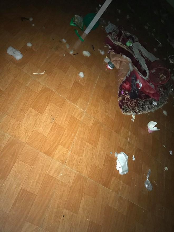 Chủ nhà thất kinh vì phòng trọ gái xinh bẩn như bãi rác, đăng đàn bóc mẽ ai ngờ bị mắng ngược 5