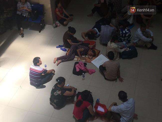 Ảnh: Người nhà bệnh nhân vạ vật gần hành lang, dưới bóng cây trong bệnh viện để tránh nắng đỉnh điểm trên 40 độ ở Hà Nội 11