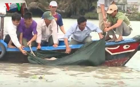 Vụ chìm sà lan trên sông Sài Gòn: Tìm thấy 2 thi thể thuyền trưởng và thuyền viên 2