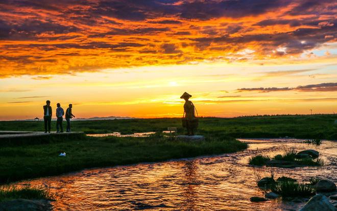 24h qua ảnh: Cá chết trắng phủ kín mặt hồ ở Hà Nội 7