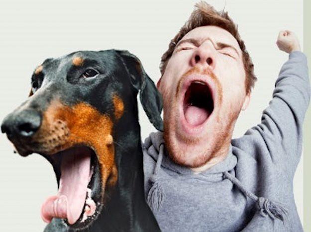 Chắc là bạn không biết: Ngáp chính là một trong những bí ẩn lớn nhất của con người 3