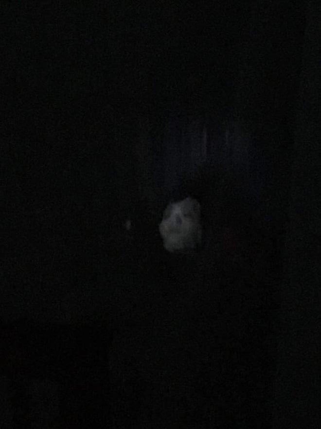 Vừa bước vào nhà, chồng chết lặng khi nhìn thấy bóng hình trên giường - Ảnh 1.